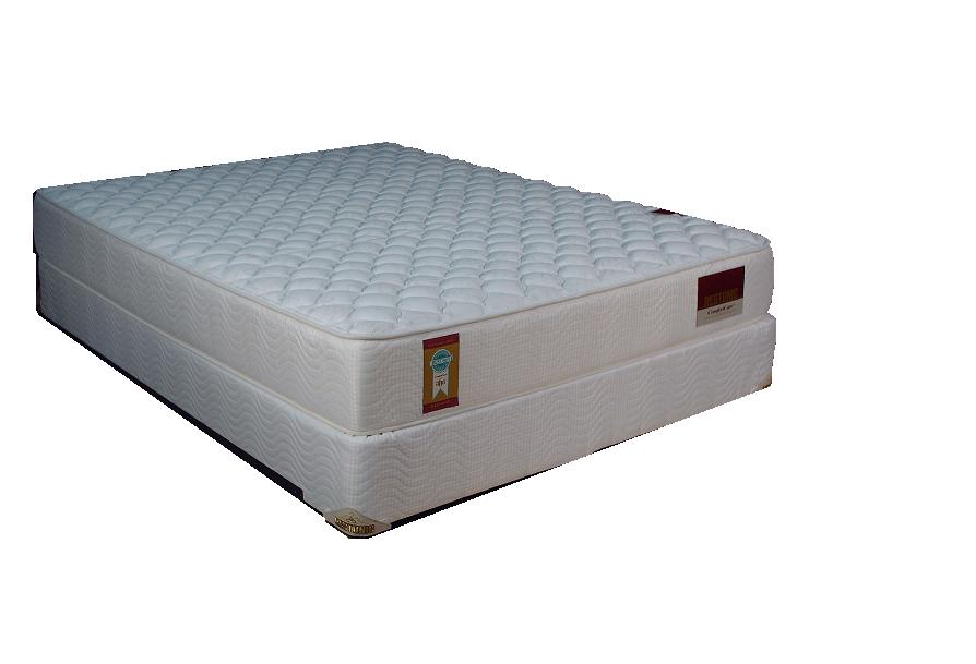 "Restonic Comfort Care-Amber 12"" Interspring Mattress Firm"