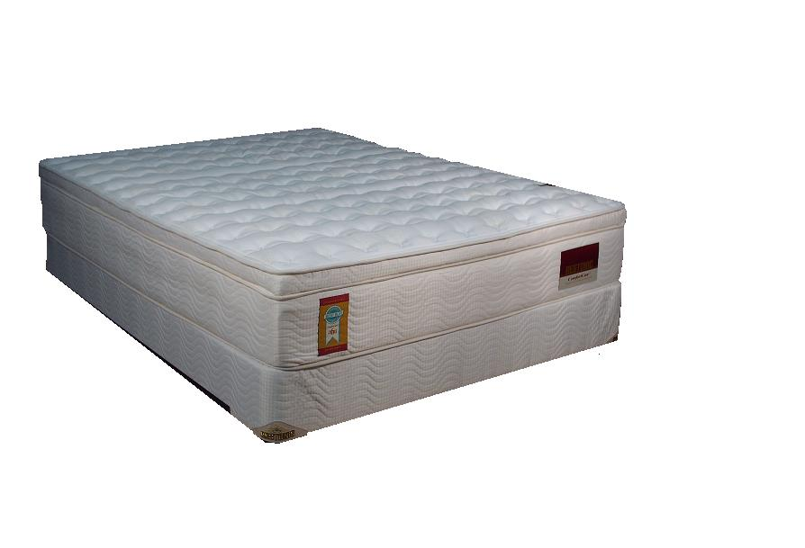"Restonic Comfort Care-Courtney 13"" Interspring Mattress EuroTop"