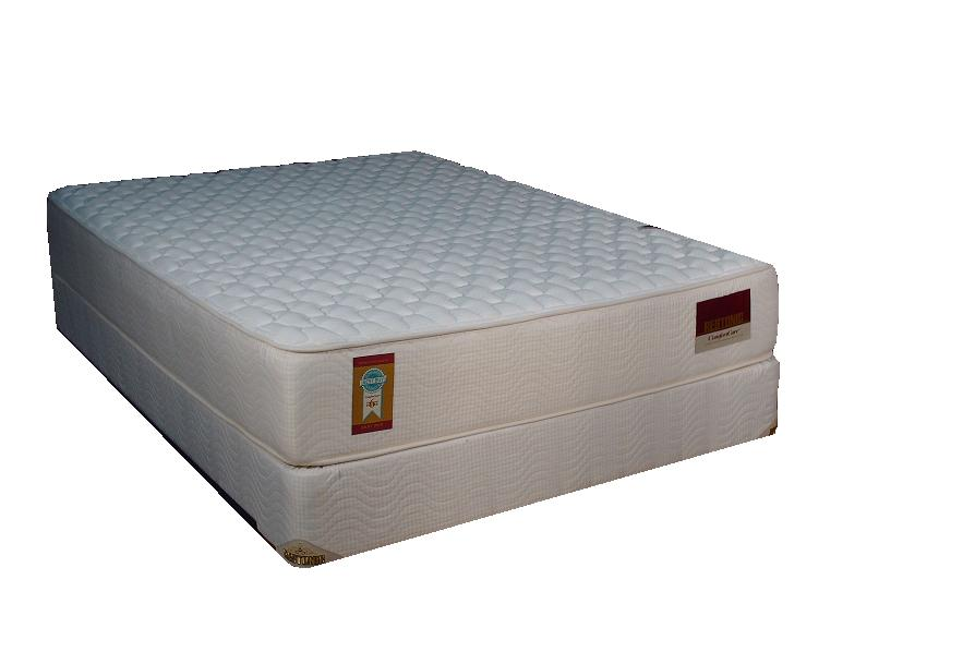 "Restonic Comfort Care-Courtney 13"" Interspring Mattress Firm"